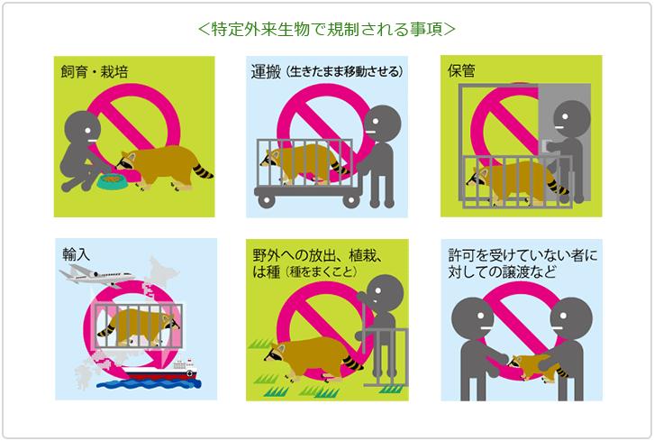 kisei - 爬虫類の特定外来種生物について