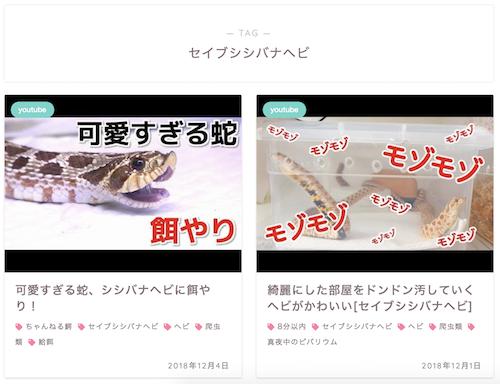 スクリーンショット 2018-12-10 8.34.05 - 初心者に絶対オススメのヘビ5種と飼育方法