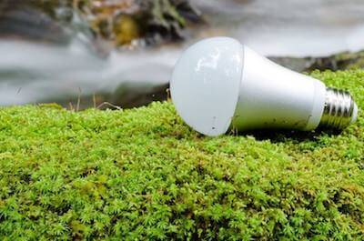 爬虫類の飼育で使用する自然光・保温球・紫外線ライトの知識