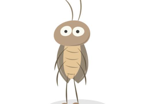 実は優秀な餌!禁断のゴキブリ繁殖[デュビア編] - 実は優秀な餌!禁断のゴキブリ繁殖[デュビア編]
