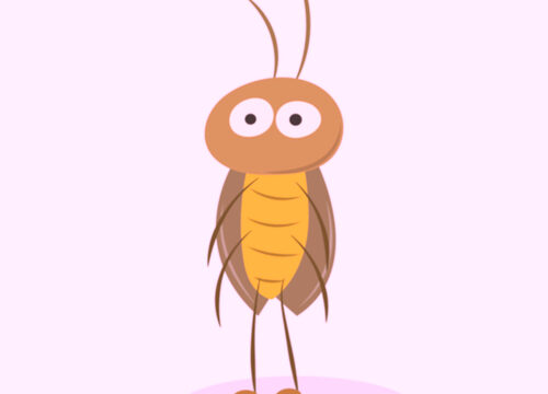 実は優秀な餌!禁断のゴキブリ繁殖[レッドローチ編] - 実は優秀な餌!禁断のゴキブリ繁殖[レッドローチ編]