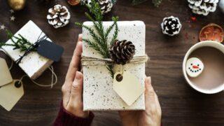爬虫類を飼育している人に送るプレゼント10選 - 爬虫類を飼育している人に送るプレゼント10選