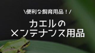 カエルのメンテナンス用品