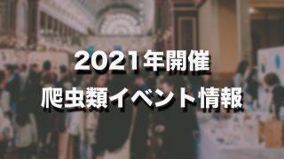 爬虫類 2020 ブラックアウト
